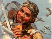 Booze is My Co-Pilot